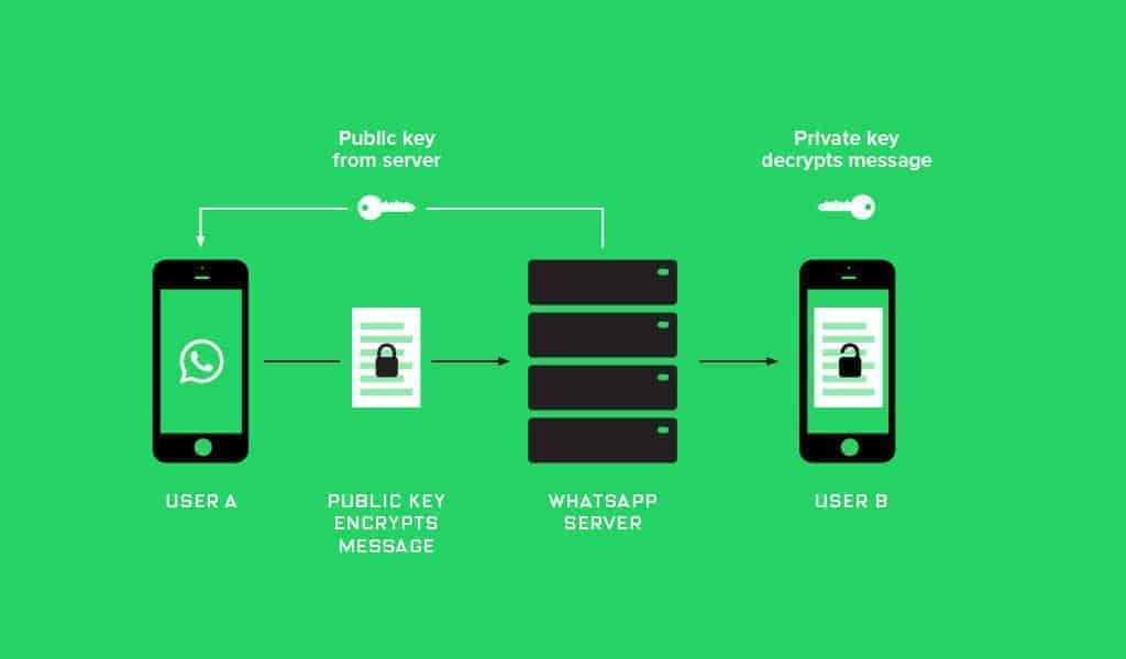 What changes with the release of the WhatsApp Business API