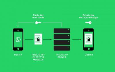 Qu'est-ce qui change avec la sortie de l'API de WhatsApp Business?