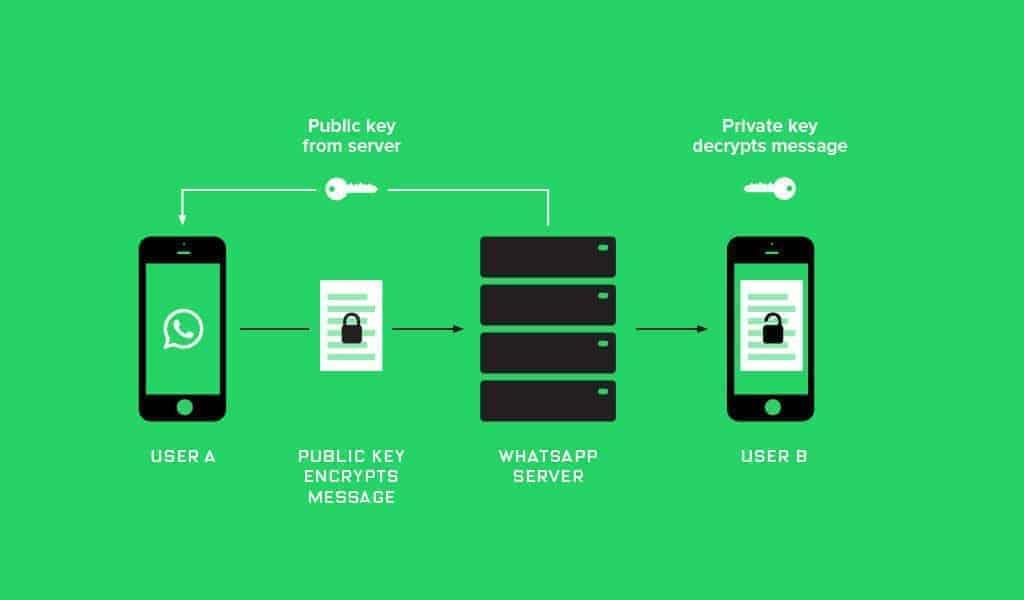 Qu'est-ce qui change avec l'API de WhatsApp Business?