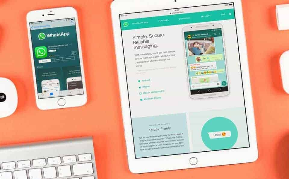 WhatsApp Business multi-device: will this be a solution for companies?